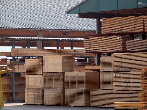 Jedes Holz hat andere Eigenschaften, die für die Lagerung relevant sind